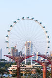 Attraction for tourists - Big observation wheel, Singapore. Stock Images
