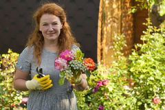Attractive adult woman gardener grows flowers roses Royalty Free Stock Image