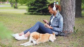 Attractive African American woman is listening to music with headphones and using smartphone sitting on grass in park. While her pedigree dog is lying nearby stock video