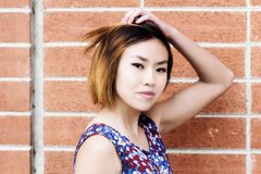 Attractive Asian American Woman Portrait With Brick Wall Royalty Free Stock Image