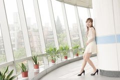 Attractive Asian girl Royalty Free Stock Photo