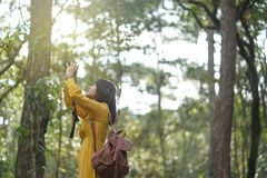 Attractive Asian woman adventure in the forest sightseeing natural and using camera take a photo at holiday travel. Attractive Asian woman adventure in the stock images