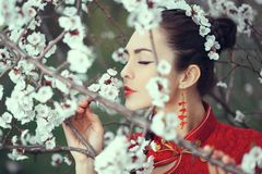 Geisha in red kimono in sakura. Attractive asian woman is smelling flowers on blossoming trees outdoors in the garden royalty free stock photography