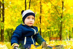 Attractive baby in autumn Park Stock Photography