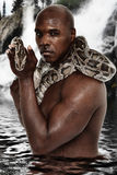 Attractive Black Man with Boa Constrictor Snake Stock Images