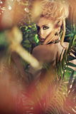 Attractive blond woman posing in the jungle. Attractive blond lady posing in the jungle Royalty Free Stock Photography