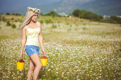 Attractive blonde in chamomile field. Young woman in wreath Royalty Free Stock Images