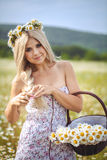 Attractive blonde in chamomile field. Young woman in wreath Royalty Free Stock Photos