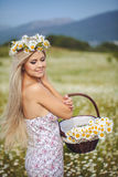 Attractive blonde in chamomile field. Young woman in wreath Royalty Free Stock Photo