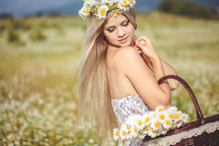 Attractive blonde in chamomile field. Young woman in wreath Stock Image