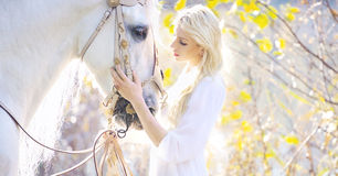 Attractive blonde cutie touching royal horse Royalty Free Stock Image