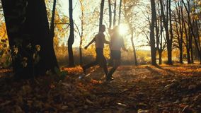 Attractive blonde girl in an elegant sweater and nice skirt holds hand of a handsome young man. Young people having date stock video