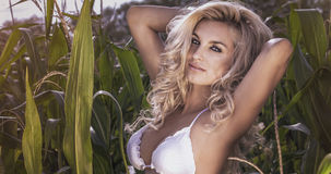 Attractive blonde woman Royalty Free Stock Photo