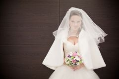 Attractive bride Stock Image