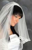 Attractive bride Royalty Free Stock Images