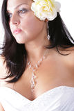 Attractive bride. Photo of the attractive brunette (bride Royalty Free Stock Image