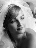 Attractive bride with veil Stock Photography
