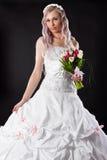 Attractive bride in a wedding dress Stock Photos