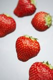 Attractive bright red strawberries Royalty Free Stock Images