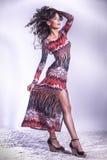 Attractive brunette beauty posing in studio Stock Photos