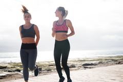 Attractive brunette and blonde getting fit royalty free stock photo