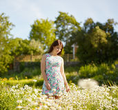 Attractive brunette girl and meadow Stock Image