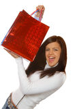 Attractive brunette holding gift bag Stock Photos