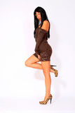 Attractive brunette wearing brown dress Royalty Free Stock Photography