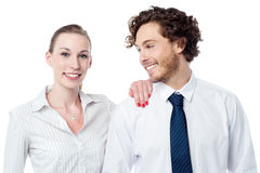Attractive business colleagues posing Royalty Free Stock Images