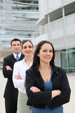 Attractive Business Team Stock Photos
