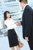 Attractive Business Team Handshake Stock Photography