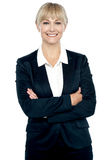 Attractive business woman Stock Photos