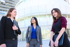 Attractive Business Woman Team Stock Photo