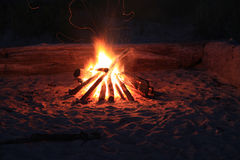 Attractive campfire stock images
