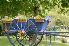 An attractive cart with flowers Royalty Free Stock Images