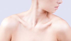 Attractive caucasian woman's  neck and shoulders Stock Image