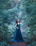 Attractive charming lady with dark hair and white skin like sleeping beauty, lady with closed eyes in middle of emerald. Forest on fabulous trail in long blue royalty free stock photos