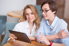 Attractive colleagues working together Royalty Free Stock Images