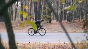 Attractive concentrated young guy in cycling clothes and helmet pedaling on road bike in autumn park. Motivated professional cycli. St is sprinting on road stock footage