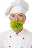 Attractive cook woman stock photography