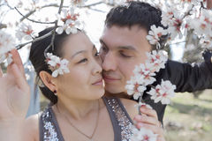 Attractive couple in blossoming park Royalty Free Stock Photos