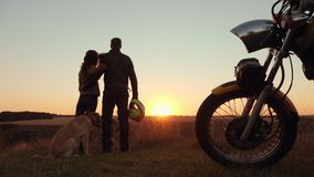 Attractive couple with dog watching the sunset stock footage
