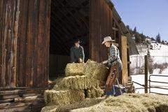 Attractive Couple Moving Hay Bales Royalty Free Stock Image