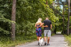 Attractive couple on a walk with a dog. Attractive couple on a walk with a dog in a wood Royalty Free Stock Photos