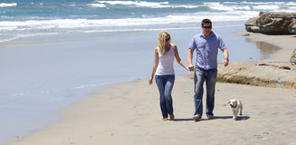 Attractive Couple Walking at the Beach With Their Puppy. A good looking couple walking on the beach holding hands.   Their cute white lab puppy is walking with Royalty Free Stock Images
