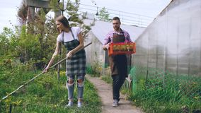 Attractive couple work near greenhouse. Man gardener in apron collect garbage in garden while his wife talking him Royalty Free Stock Images