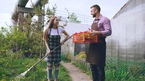 Attractive couple work near greenhouse. Man gardener in apron collect garbage in garden while his wife talking him Stock Photos