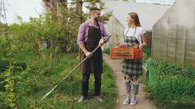 Attractive couple work near greenhouse. Man gardener in apron collect garbage in garden while his wife talking him Stock Image