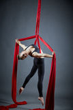 Attractive dancer posing with aerial silks Royalty Free Stock Photography