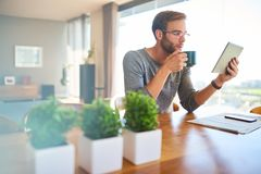 Handsome young european architect drinking coffee and reading at home Royalty Free Stock Image